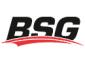 Aftermarket BSG parts